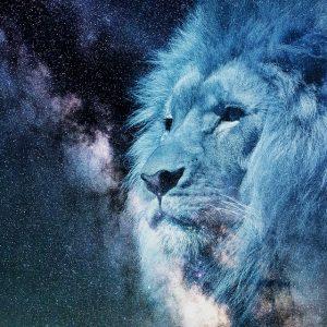 Conoce los defectos y virtudes de Leo